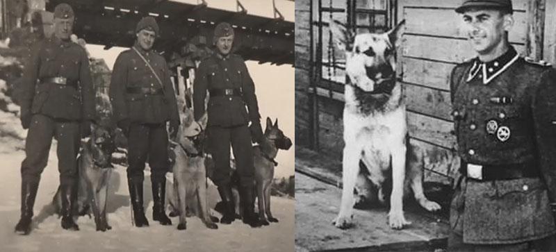 В 1939 году немецкие военные начали возводить известные всем концлагеря, в которых впоследствии мучились и умирали сотни людей.