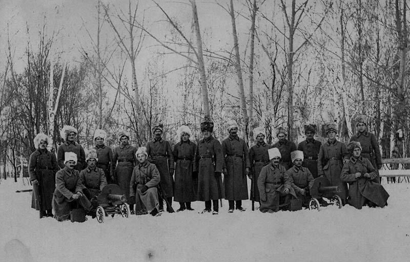 Кампания на севере  Летом 1918 года
