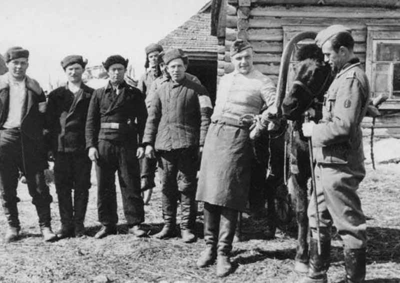 Некоторые добровольцы объединялись в батальоны, входили в состав немецкой армии