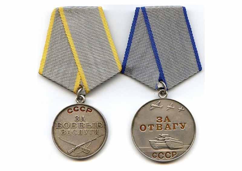 В сентябре 1941 года Семена Гитлера наградили медалью «За отвагу».