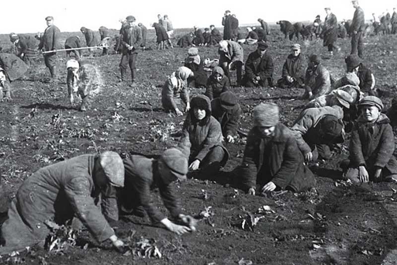 30-е годы прошлого столетия начались для СССР волной непонятной эпидемии