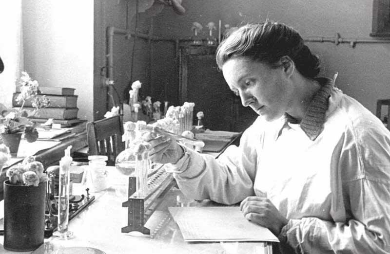 Когда в 1945 году микологи выявили возбудителя, то болезнь переименовали в алиментарно-токсическую алейкию