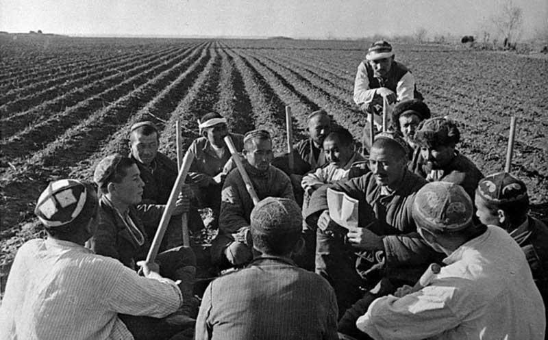 Зимой 1933 года все виды колхозных работ были распределены на семь категорий по квалификации, трудности выполнения и значимости для колхоза