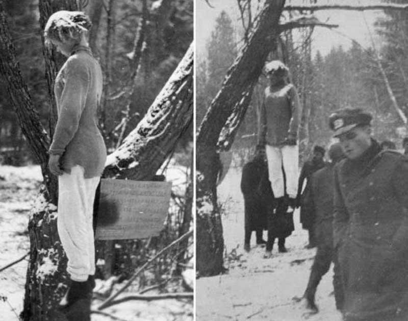 Как писали в «Красной Звезде», осенью 1941 года Веру Волошину зачислили в ряды красноармейцев-добровольцев.