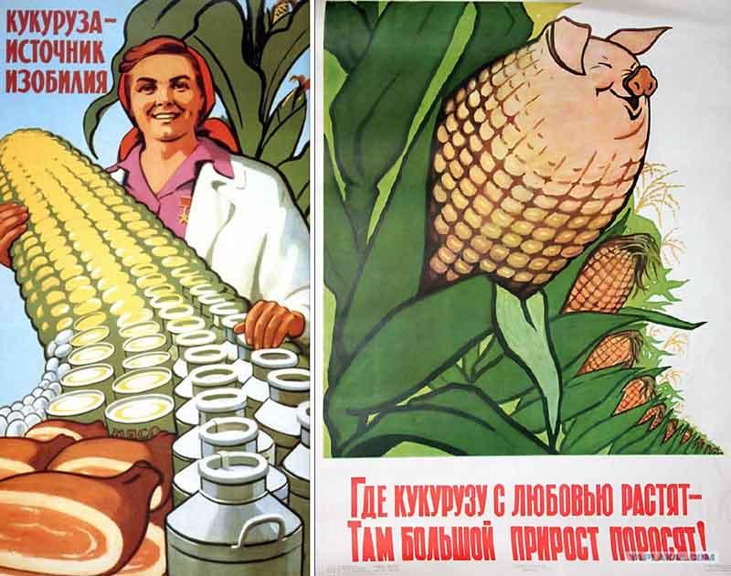 «Кукурузную эпопею» было совсем не остановить, когда Никита Хрущев увидел американские поля кукурузы.